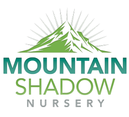 Mountain Shadow Nursery Logo